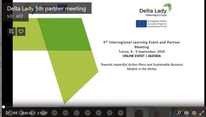 The Delta Lady partner online meeting