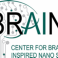 Nanotechnology inspired by the brain