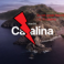 Advise to MAC users do not update to the next version MacOS (10.15 Catalina)